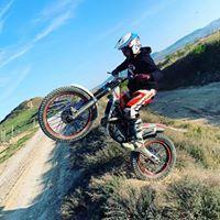 Foto del perfil de Dani Toledo