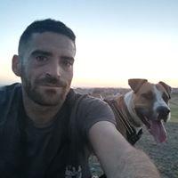 Foto del perfil de David Alonso Fernandez